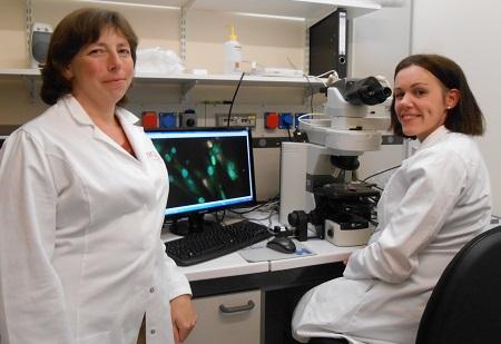 Un nouveau soutien d'une association de patients US pour la recherche médicale à l'UMONS