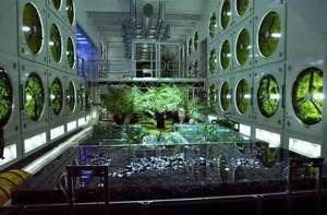 90 chercheurs réunis à l'UMONS pour Mélissa, le projet d'écosystème artificiel spatial