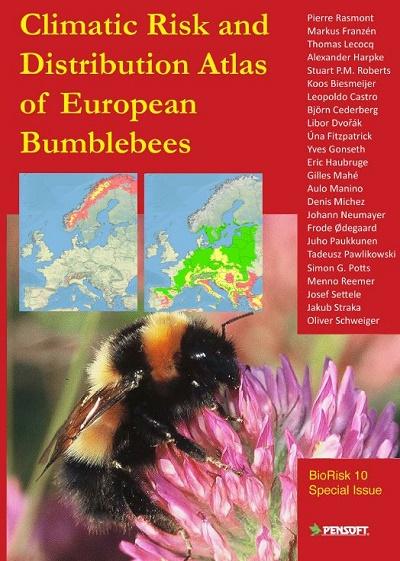 L'UMONS étudie le déclin européen des abeilles