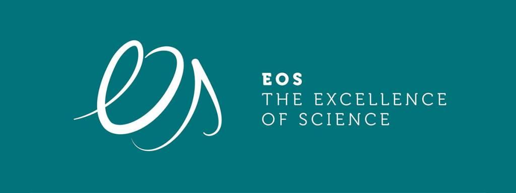 Trois projets sélectionnées lors de l'appel à projets 'Excellence of Science' financé conjointement par le FNRS et le FWO