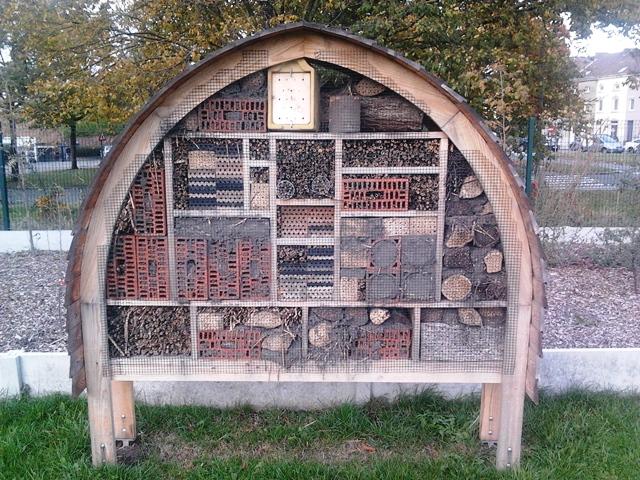 Des hôtels à abeilles bientôt dans des bâtiments de l'UMONS