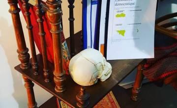 Le Laboratoire démocratique de l'Ecole de Droit a fait sensation au Printemps des Sciences !